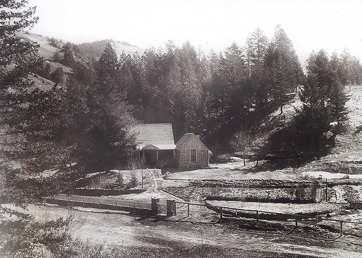 Highwood Cabin